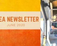 NLEA June Newsletter