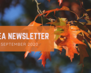 NLEA Sept newsletter