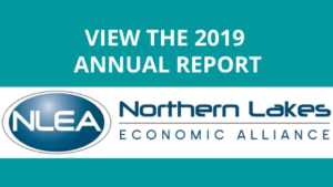 download NLEA 2019 annual report